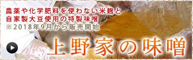 上野家の味噌